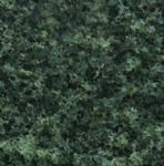 WT1365 Woodland Scenics: Coarse Turf - Dark Green (50 cu. in. Shaker)